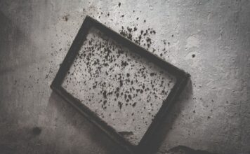 Can you die from black mold?